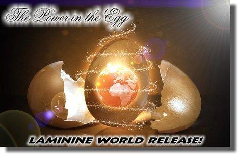 Laminine ® | laminine | Scoop.it