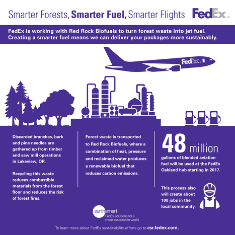 Biofuels Take Flight with FedEx [Infographic] | Sustainable Technologies | Scoop.it