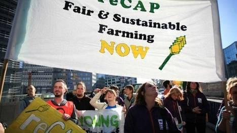 Lancement en Belgique d'une association européenne pour la promotion de l'agroécologie | Questions de développement ... | Scoop.it