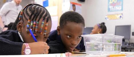When fish come to school, kids get hooked on science | ICTmagic | Scoop.it