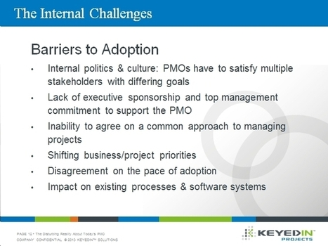 Identifying the Internal Challenges and Barriers to Project Portfolio Management Adoption | Project Portfolio Management Digest | Scoop.it