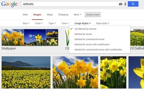 Google Image Search makes it easier to sort results by licensing rights | Droit et média | Scoop.it