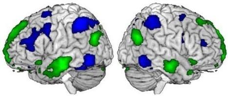 Stanislas Dehaene et la bosse des maths   Neurosciences   Scoop.it
