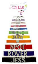 designer dog collar | Ultimate Guide to Dog Collars | Scoop.it