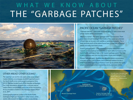 Great Pacific Garbage Patch | AK | Scoop.it