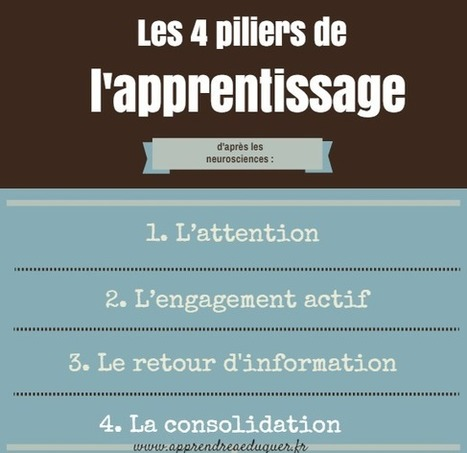 Les 4 piliers de l'apprentissage d'après les neurosciences | Technologies educatives | Scoop.it