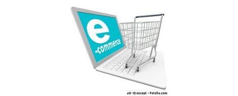 Le E-Commerce est Insensible à la Crise   WebZine E-Commerce &  E-Marketing - Alexandre Kuhn   Scoop.it