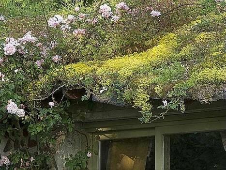 Réaliser une toiture végétalisée | Potager & Jardin | Scoop.it