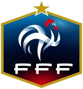 Jouer pour l'équipe de France implique plus de devoirs que cela n'octroie de droits | Annonce en France | Scoop.it