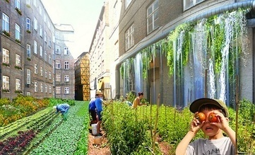 Ethical Foods: Urban Homesteading — City Farmer News | Vertical Farm - Food Factory | Scoop.it