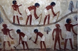 """Climate change in ancient Egypt"" 