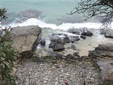 Rocky Shores   Year 11 Biology - Moreton Bay Field Report   Scoop.it