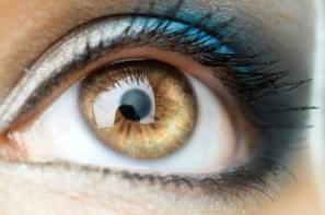 Human corneas regrown to restore vision - Medical News Today | Optometry | Scoop.it