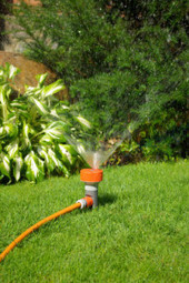 Choose Pink & Green (Lawn Care and Landscape) in Miramar, FL | Choose Pink & Green (Lawn Care and Landscape) in Miramar, FL | Scoop.it