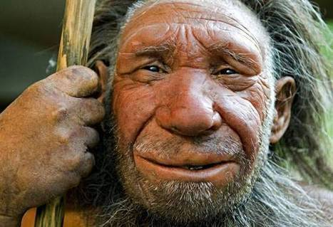 Palaeolithic Park? Harvard professor seeks 'adventurous' woman to give birth to baby Neanderthal   Upsetment   Scoop.it