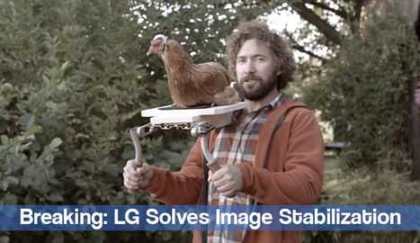 LG Unveils New Ultra-Stable Chicken Cam | Sizzlin' News | Scoop.it
