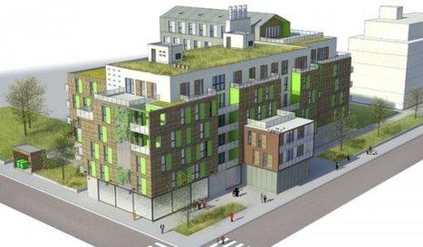 Biodiversité : un nouvel enjeu pour le bâtiment et la ville - Environnement | Newslettter | Scoop.it