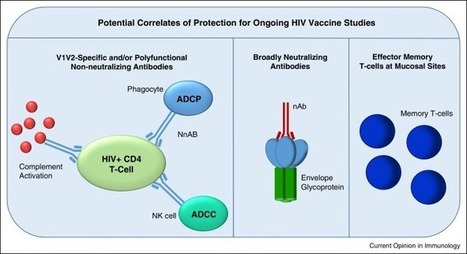New concepts in HIV-1 vaccine development | Virology News | Scoop.it
