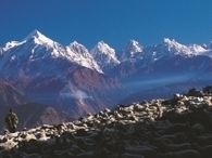 How Safe are Our Mountain Habitats?  Pre-Summit Workshop: A Curtain Raiser to IV Sustainable Mountain Development Summit | Montagne - Environnement - Biodiversité - Climat | Scoop.it