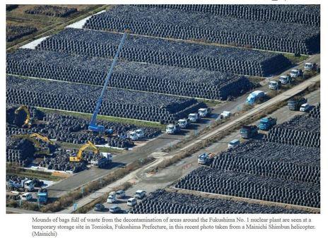 Nine Million Bags Of Nuclear Waste Piled Up In Fukushima | Salariés précaires de l'industrie nucléaire | Scoop.it