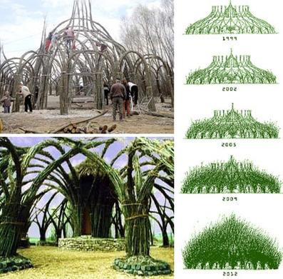 Growing Tree Building by Sanfte Strukturen   Art Installations, Sculpture, Contemporary Art   Scoop.it