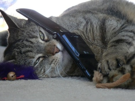 Smartphones mouchards: comment protéger votre vie privée   Geeks   Scoop.it