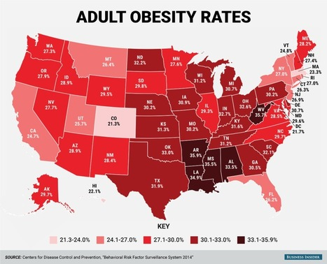 State obesity rate map - Business Insider | Plant Based Diet | Scoop.it