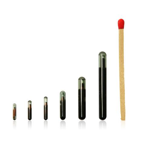 12mm x 2.12mm HID RFID Glass Tag 125KHz Unique - AbleID.com | RFID | Scoop.it