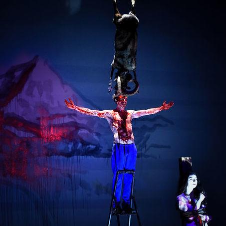 La «Mouette» de combat de Thomas Ostermeier | théâtre in and off | Scoop.it