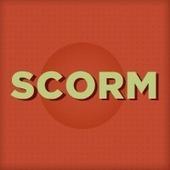 Convergence Training   Blog: What Is SCORM?   Online Teacher Underground   Scoop.it
