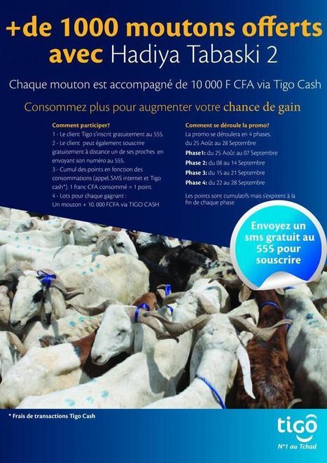 Hadiya Tbaski 2014 | Tigo Tchad | Telecom Africa & Mobile Loyalty | Scoop.it