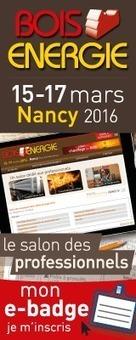 Avis de l'ADEME : l'hydrogène dans la transition énergétique - euro-énergie | CLEAN ENERGY (Production, Storage, Smart Grid,...) | Scoop.it
