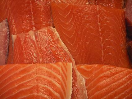 Les saumons d'élevage, gavés aux pesticides ? | Toxique, soyons vigilant ! | Scoop.it