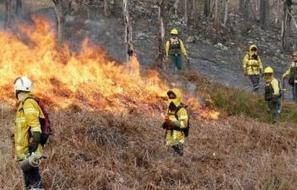 Brûlage : les Hautes-Pyrénées ont valeur d'exemple | Vallée d'Aure - Pyrénées | Scoop.it
