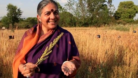 Seed Freedom | biodiversity | Scoop.it