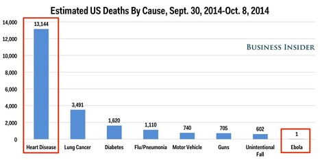 Here's How Many Americans Have Died From Top Causes Since The First Reported Case Of US Ebola | For Curious minds | Scoop.it