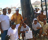 28-Hour Fight Off Cabo San Lucas Yields Massive Marlin | e-Expeditions | Scoop.it