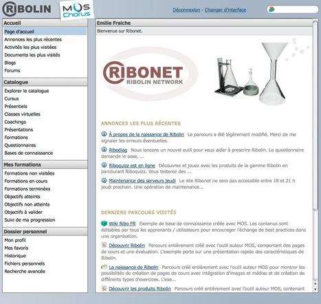 Le Blended Learning, nouvel horizon de MindOnSite | Collaboratif-Info | Community Management - French | Scoop.it