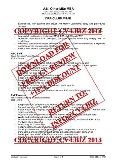 Executive CV Formatting | Professional CV | Scoop.it