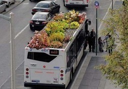 Gardens Thrive on Top of City Busses | Wake Up World | Vertical Farm - Food Factory | Scoop.it