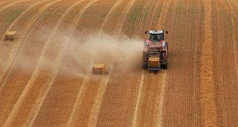 Céréales: l'Europe doit produire plus et mieux   IRIS Geopolitics of Grain   Scoop.it