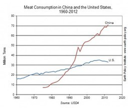 It's official: China now eats twice the meat we do | The Great Transition | Scoop.it