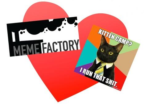 What We Know So Far » MemeFactory Kitten Camp PDF | meme, lol & existensialism | Scoop.it