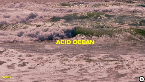 Ocean Acidification | Chemistry - How can chemistry affect our world? | Scoop.it