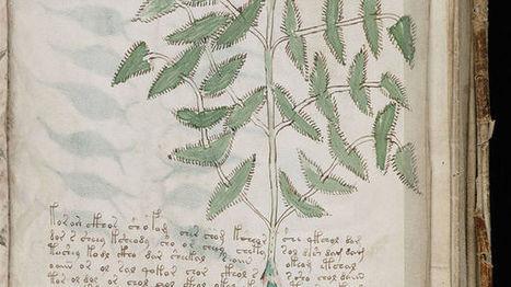 L'énigme du manuscrit de Voynich face aux avancées de la cryptologie | Revue de presse : École nationale des chartes | Scoop.it