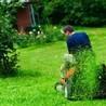 C&J Lawn Care Service
