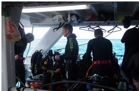 Scuba Diving with Asthma   ScubaObsessed   Scoop.it