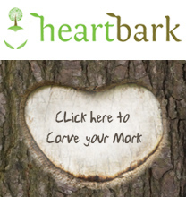 This is the Journaling tree! Make your mark or plant your own tree! | Journal For You! | Scoop.it