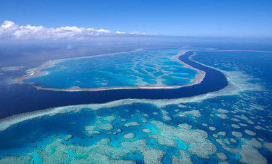 Great Barrier Reef's condition declined from moderate to poor in 2011 | Sustain Our Earth | Scoop.it