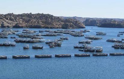 Irrigation: Nouveau débat sur les eaux du Nil | Égypt-actus | Scoop.it
